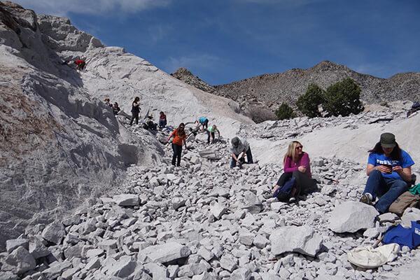 Educators dig through rocks