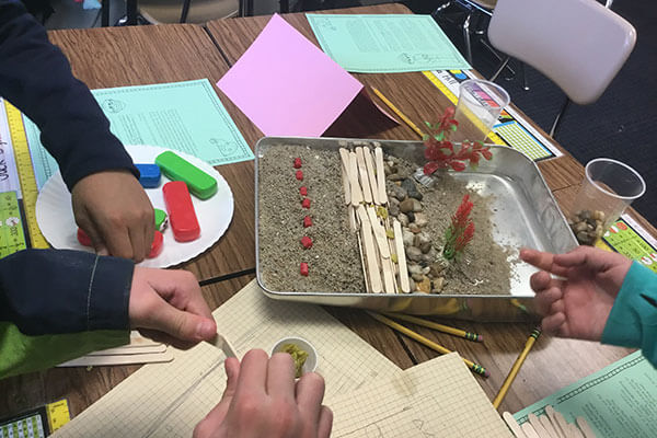 students cut up popsicle sticks for barrier erosion experiment